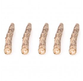 5 Pcs Natural Cat Catnip Sticks