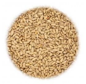 Bird food 25 kg sunflower seeds
