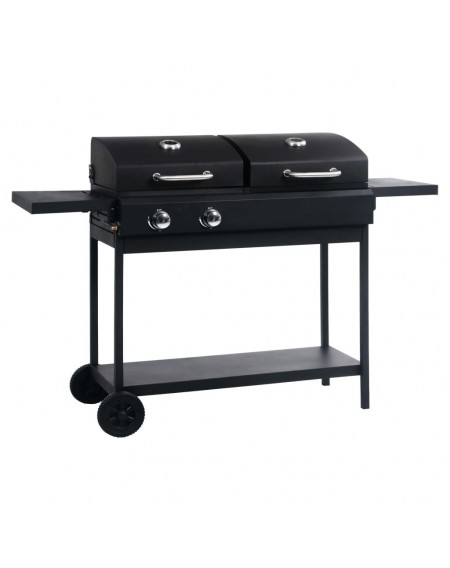 Gas and charcoal grill with 2 burners